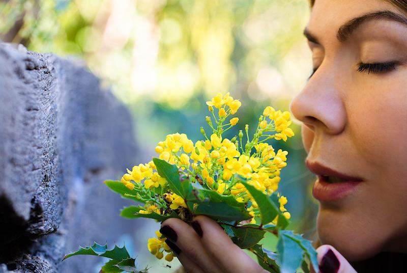 beneficios de la naturaleza lullibarri photographer