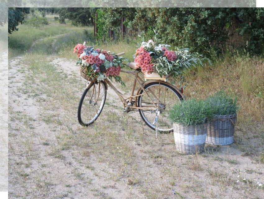 boda-bici-campo-tu-decoracion-original