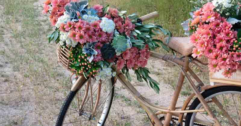 Bienvenida para una boda en pleno campo