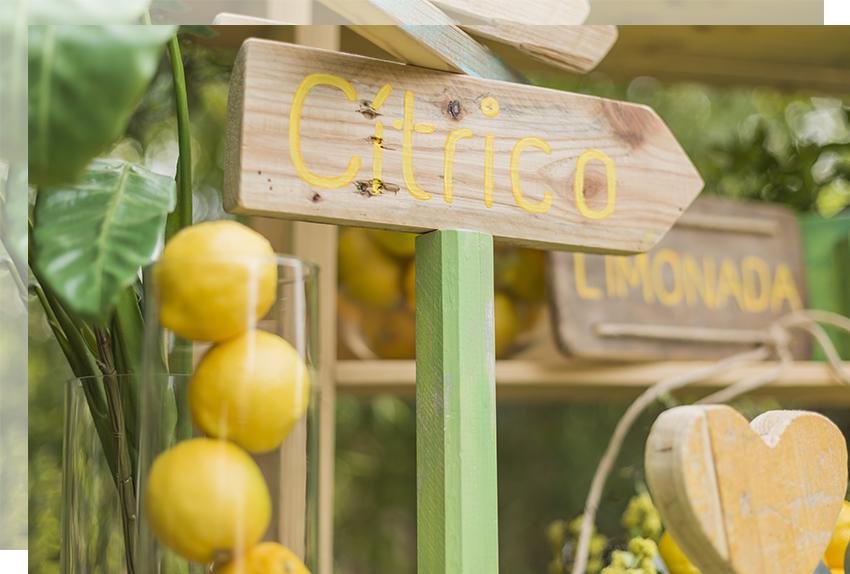 corner-limon-boda-tu-decoracion-original