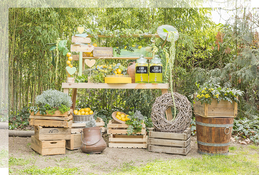 corner-limonada-boda-tu-decoracion-original