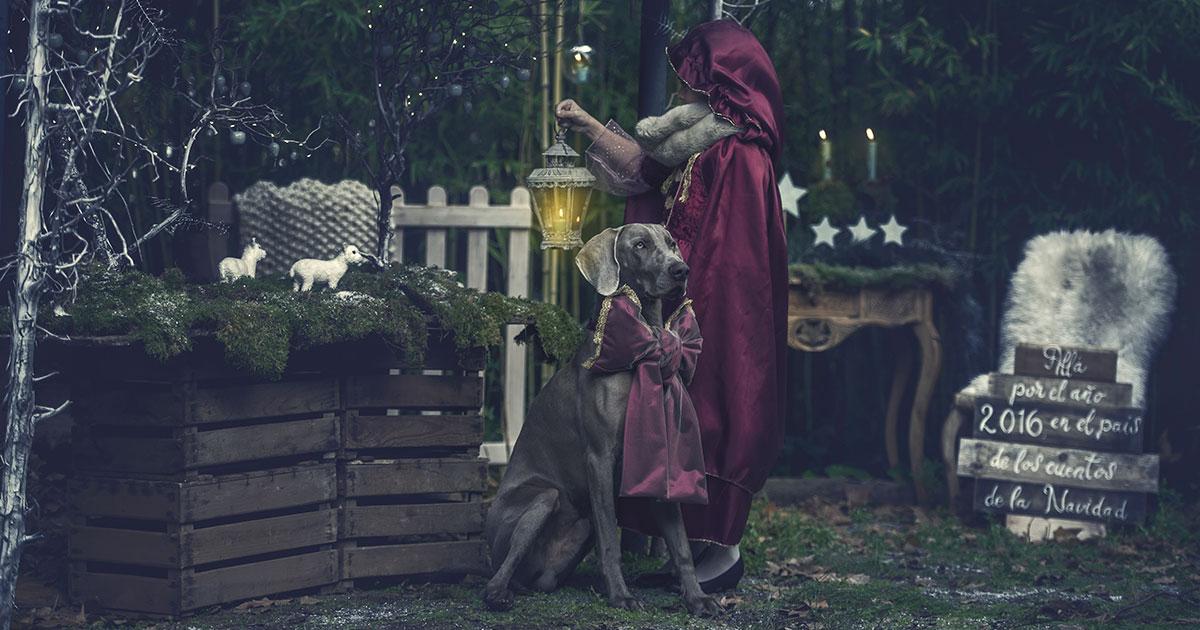 En el País de los cuentos de la Navidad