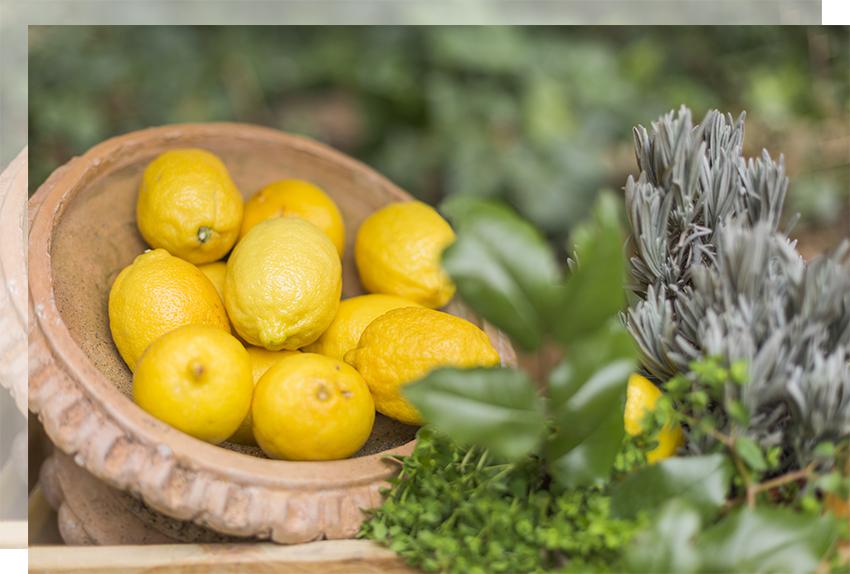 limones-decor-limonada-boda-tu-decoracion-original