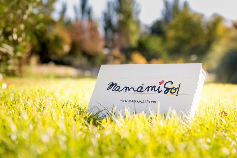 Logotipo Mamamisol