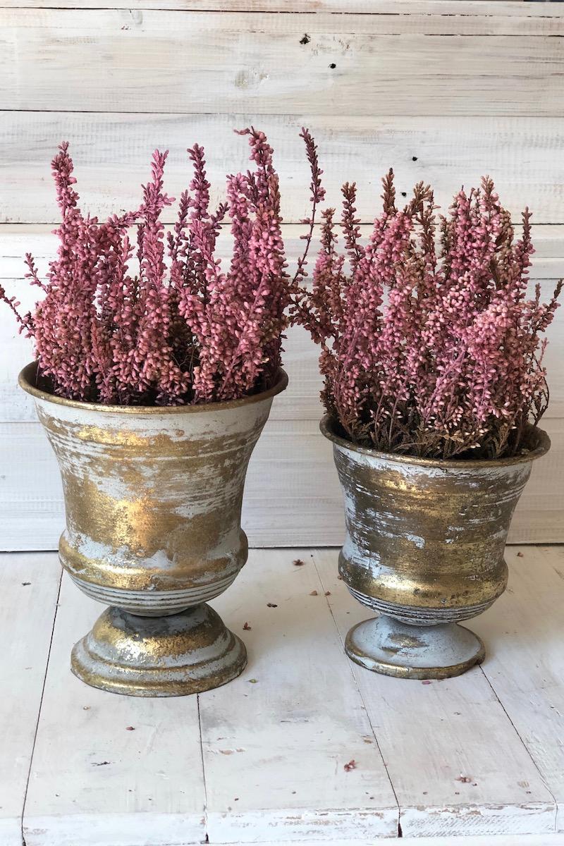 pintar flores secas