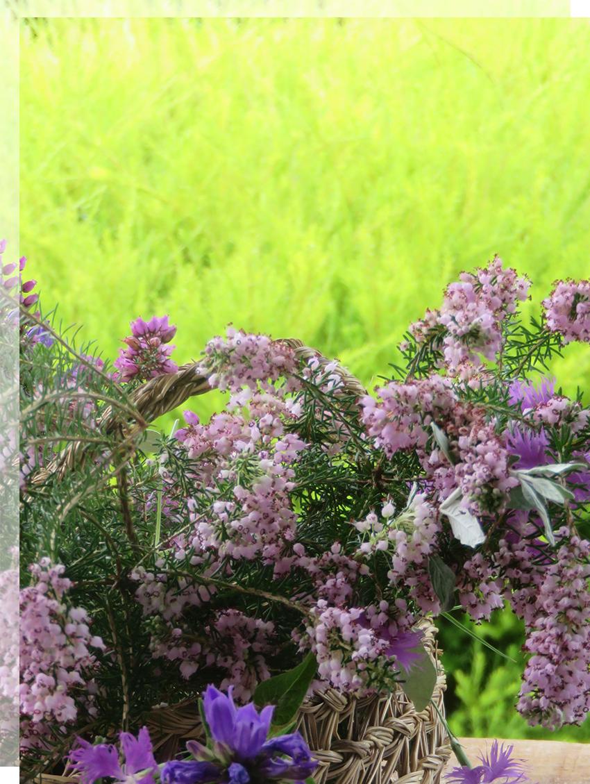 ramos-novia-silvestre-flores-boda-tu-decoracion-original
