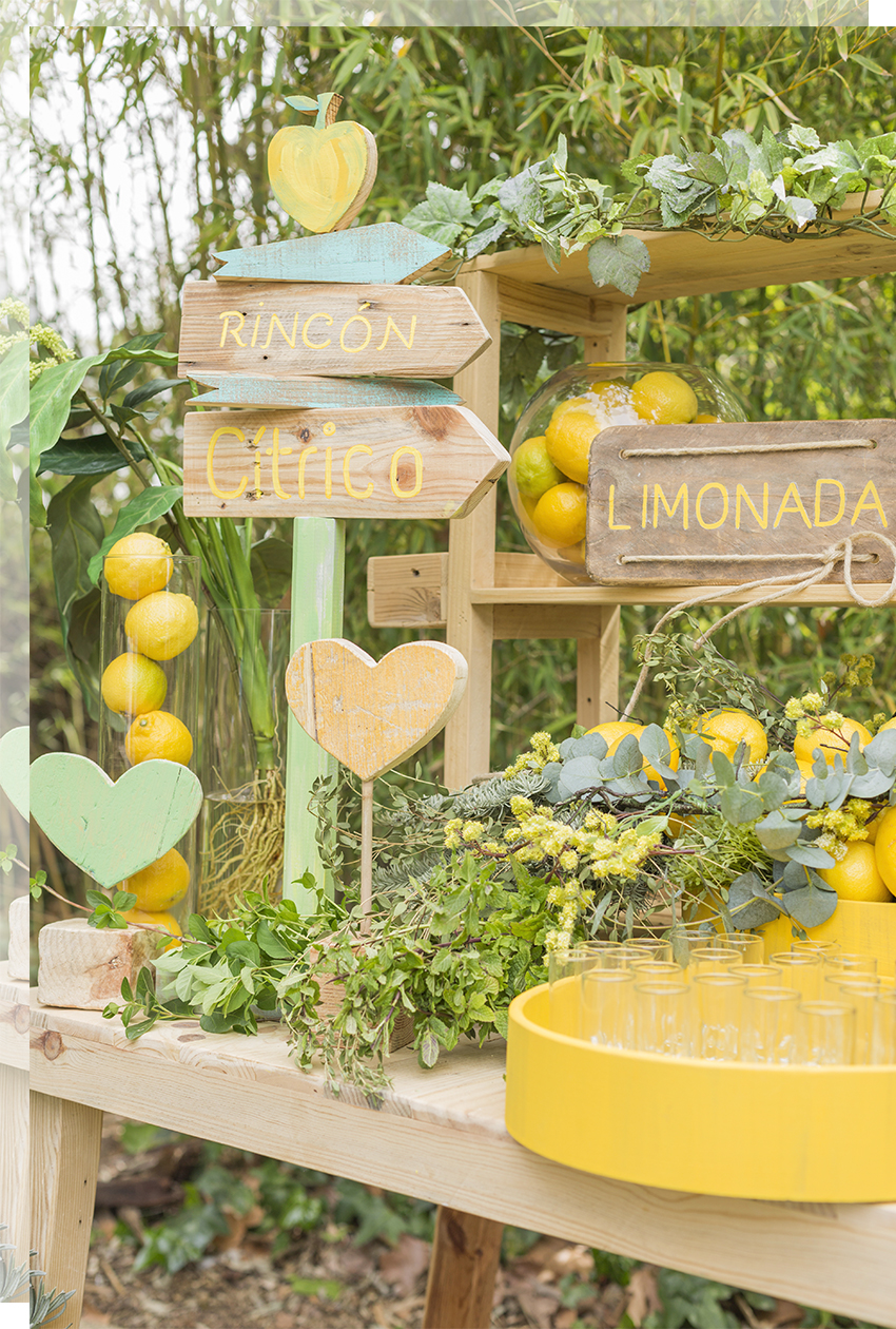 rincon-limonada-boda-tu-decoracion-original